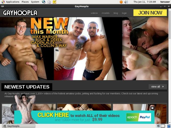 Gay Hoopla Paypal Join